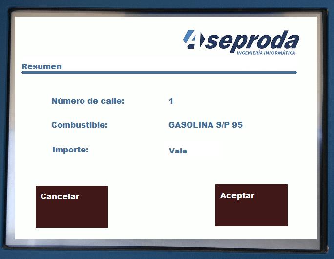 resumen_pago_vale